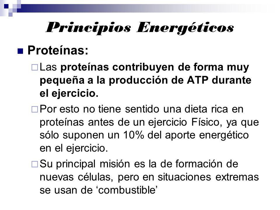 Principios Energéticos Proteínas: Las proteínas contribuyen de forma muy pequeña a la producción de ATP durante el ejercicio. Por esto no tiene sentid