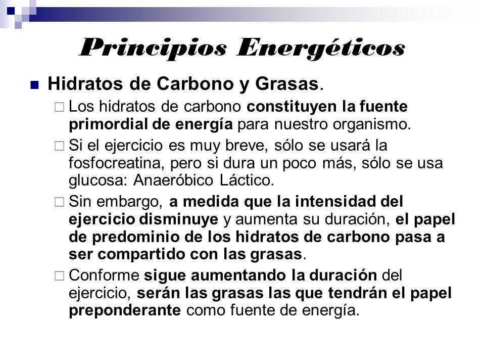 Principios Energéticos Hidratos de Carbono y Grasas. Los hidratos de carbono constituyen la fuente primordial de energía para nuestro organismo. Si el