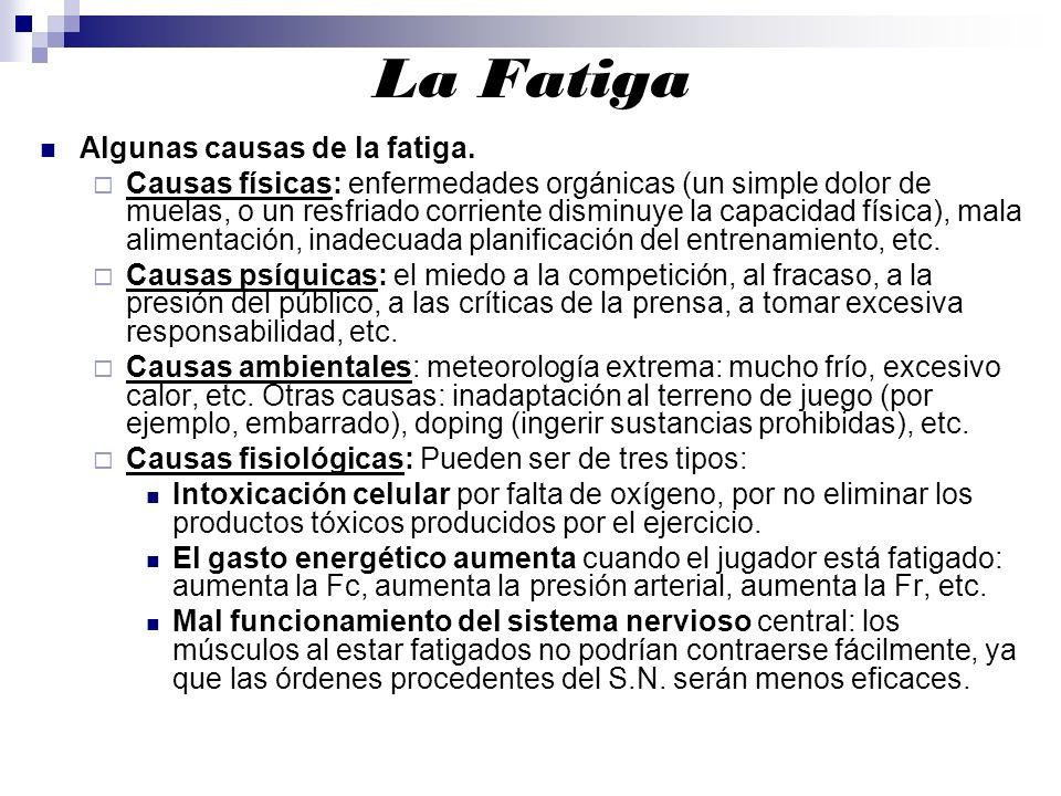 La Fatiga Algunas causas de la fatiga. Causas físicas: enfermedades orgánicas (un simple dolor de muelas, o un resfriado corriente disminuye la capaci