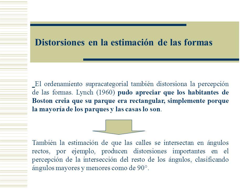 Distorsiones en la estimación de las formas El ordenamiento supracategorial también distorsiona la percepción de las formas. Lynch (1960) pudo aprecia