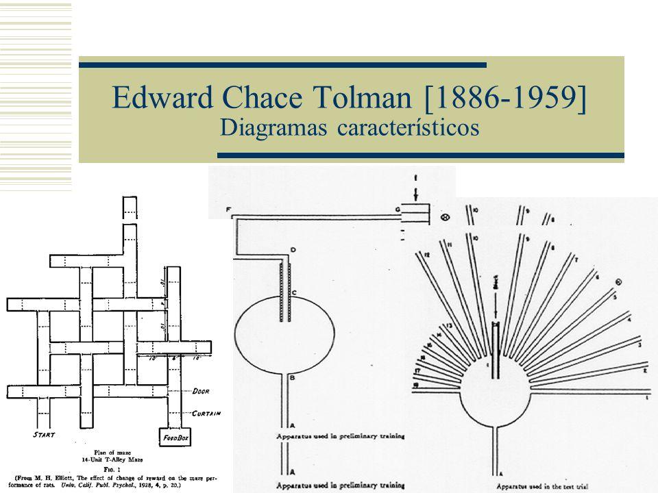 Edward Chace Tolman [1886-1959] Conductismo intencional Conductismo intencional Interponía variables intervinientes (cogniciones, propósitos, expectativas) entre los estímulos y las respuestas Los estímulos entrantes no se conectan mediante clavijas unidireccionales a las respuestas salientes.