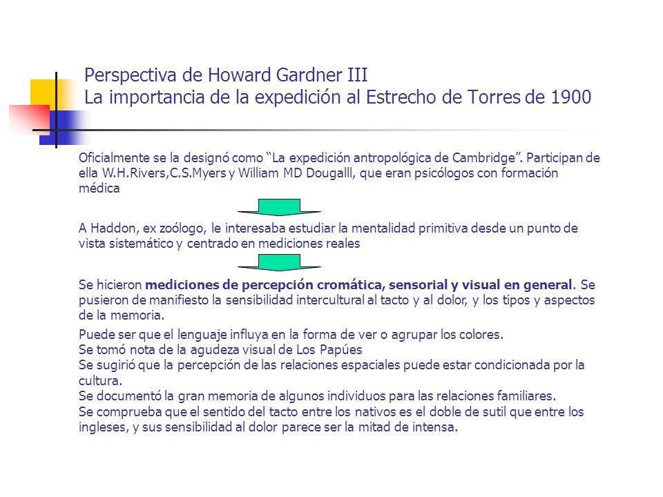 Perspectiva de Howard Gardner IV La importancia de la expedición al Estrecho de Torres de 1900 Lo importante de esta expedición fue que, en definitiva, prefiguró la importancia del trabajo de campo frente al auge de la antropología especulativa