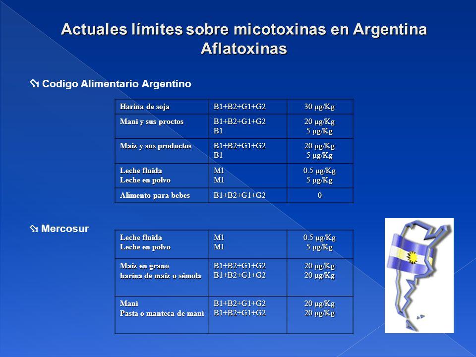 Actuales límites sobre micotoxinas en Argentina Aflatoxinas Harina de soja B1+B2+G1+G2 30 µg/Kg Maní y sus proctos B1+B2+G1+G2B1 20 µg/Kg 5 µg/Kg Maíz y sus productos B1+B2+G1+G2B1 20 µg/Kg 5 µg/Kg Leche fluída Leche en polvo M1M1 0.5 µg/Kg 5 µg/Kg Alimento para bebes B1+B2+G1+G20 Leche fluída Leche en polvo M1M1 0.5 µg/Kg 5 µg/Kg Maíz en grano harina de maíz o sémola B1+B2+G1+G2B1+B2+G1+G2 20 µg/Kg Maní Pasta o manteca de maní B1+B2+G1+G2B1+B2+G1+G2 20 µg/Kg Mercosur Codigo Alimentario Argentino