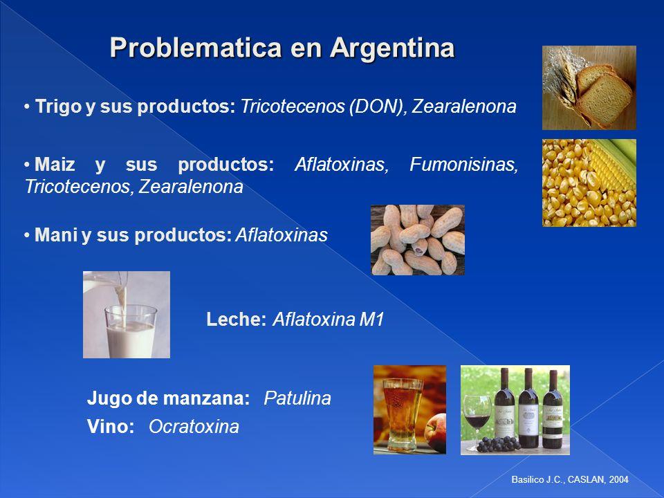 Problematica en Argentina Maiz y sus productos: Aflatoxinas, Fumonisinas, Tricotecenos, Zearalenona Jugo de manzana: Patulina Vino: Ocratoxina Trigo y sus productos: Tricotecenos (DON), Zearalenona Mani y sus productos: Aflatoxinas Leche: Aflatoxina M1 Basilico J.C., CASLAN, 2004