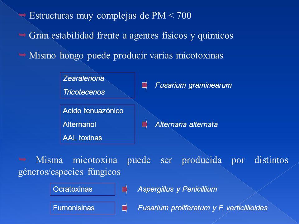 Aspergillus y Penicillium Ocratoxinas Mismo hongo puede producir varias micotoxinas Misma micotoxina puede ser producida por distintos géneros/especies fúngicos Estructuras muy complejas de PM < 700 Gran estabilidad frente a agentes físicos y químicos Zearalenona Tricotecenos Fusarium graminearum Acido tenuazónico Alternariol AAL toxinas Alternaria alternata Fumonisinas Fusarium proliferatum y F.