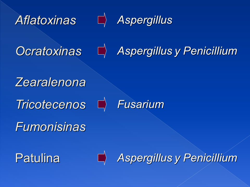 AflatoxinasAspergillus Aspergillus y Penicillium Ocratoxinas ZearalenonaTricotecenosFumonisinasFusarium Patulina