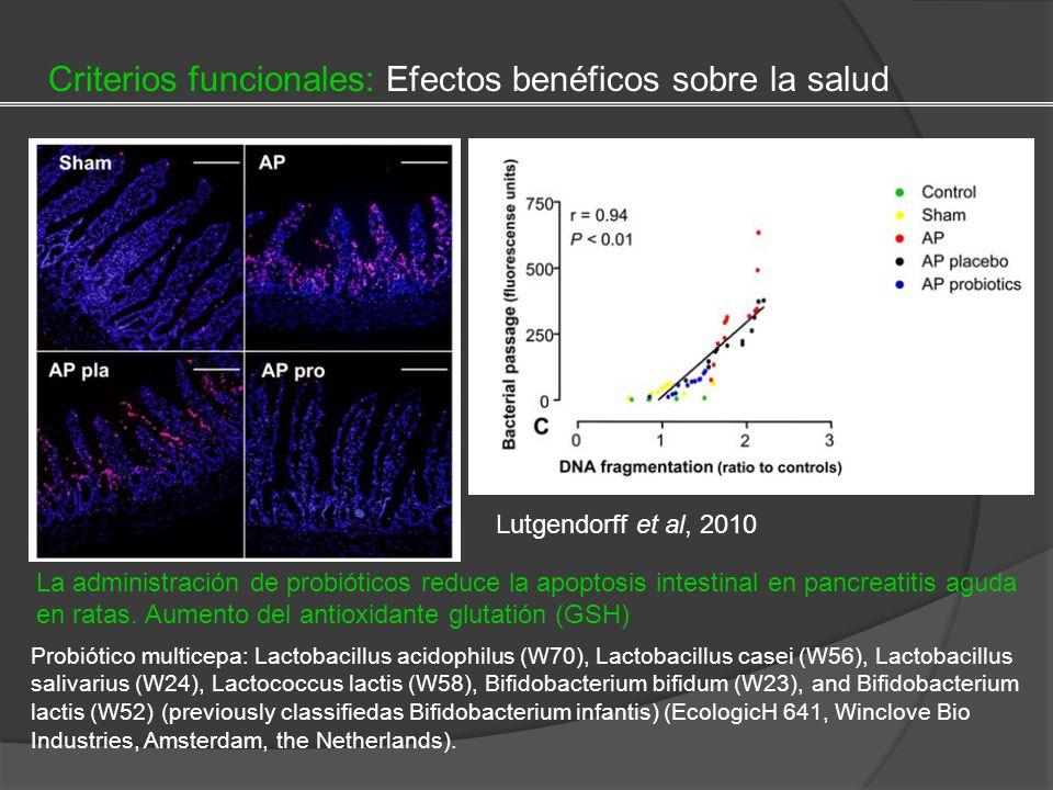 Lutgendorff et al, 2010 La administración de probióticos reduce la apoptosis intestinal en pancreatitis aguda en ratas. Aumento del antioxidante gluta