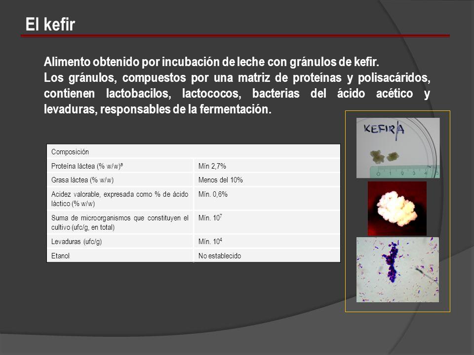 Composición Proteína láctea (% w/w) a Mín 2,7% Grasa láctea (% w/w)Menos del 10% Acidez valorable, expresada como % de ácido láctico (% w/w) Mín. 0,6%