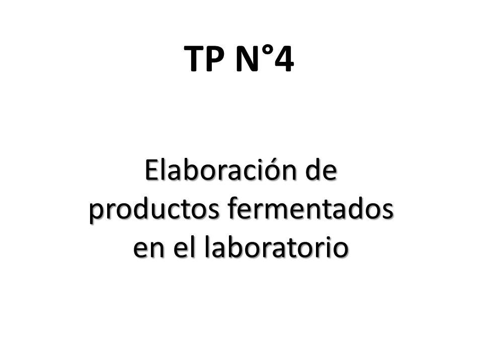 TP N°4 Elaboración de productos fermentados en el laboratorio