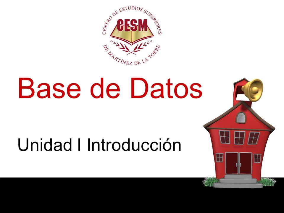 1.8 Manejador de Base de Datos … Es una interface entre los datos de bajo nivel y los programas de aplicación y módulos de consulta que se utilizan a nivel de usuario.
