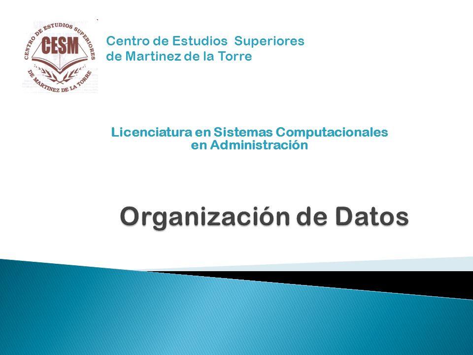 Centro de Estudios Superiores de Martinez de la Torre Licenciatura en Sistemas Computacionales en Administración