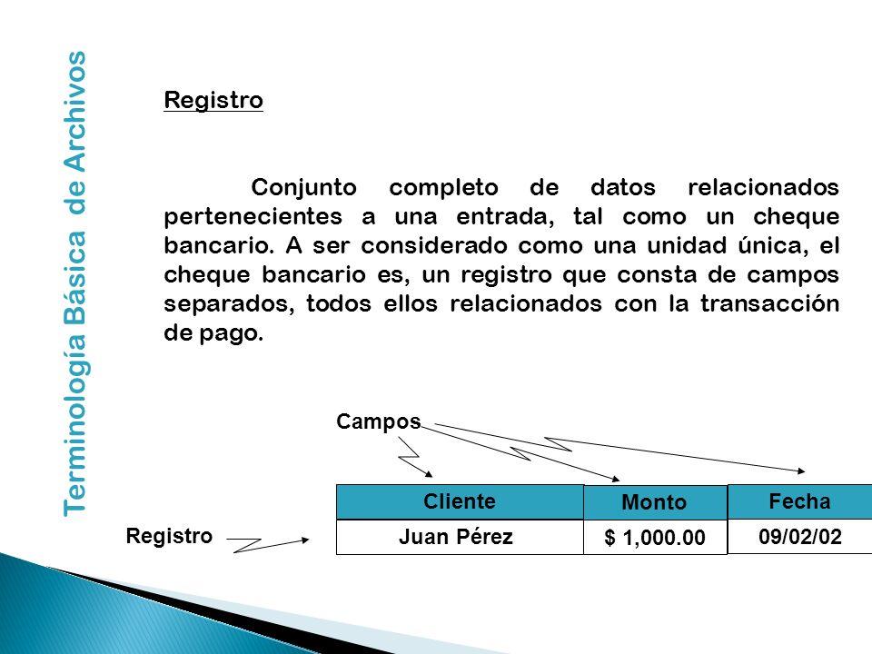 Registro Conjunto completo de datos relacionados pertenecientes a una entrada, tal como un cheque bancario. A ser considerado como una unidad única, e