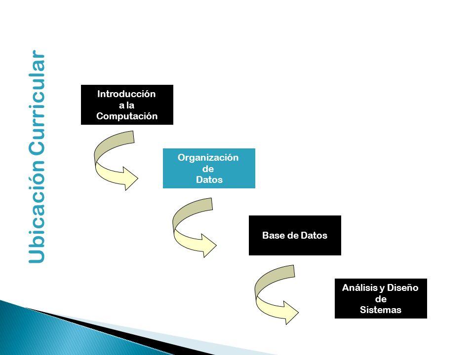 Llave de Registro Para distinguir un registro de otro, los analistas de sistemas eligen uno de los datos del registro cuyo valor único en todos los registro del archivo y lo utilizan con fines de identificación Ejemplos: Numero de matricula Numero de trabajador Terminología Básica de Archivos
