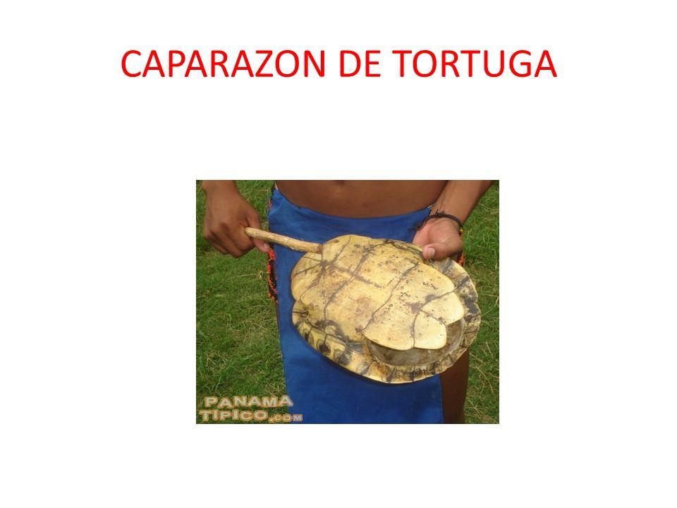 ZAMPOÑA Las zampoñas son un conjunto de instrumentos de viento compuestos de manos huecas tapadas por un extremo que producen sonidos aflautados en su agitacióninstrumentos de vientoaflautados