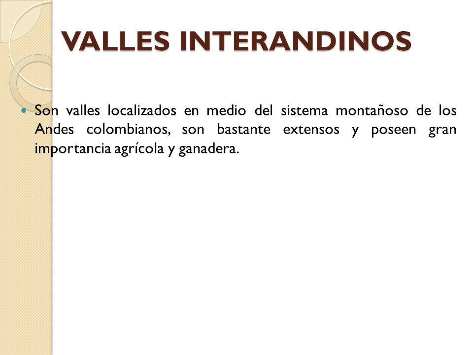 VALLES INTERANDINOS Son valles localizados en medio del sistema montañoso de los Andes colombianos, son bastante extensos y poseen gran importancia ag