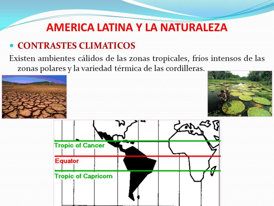 AMERICA LATINA Y LA NATURALEZA La unión de este relieve y clima a desarrollado varios biomas tales como las selvas de América Central, las Estepas de la Patagonia, la Puna de los Andes.