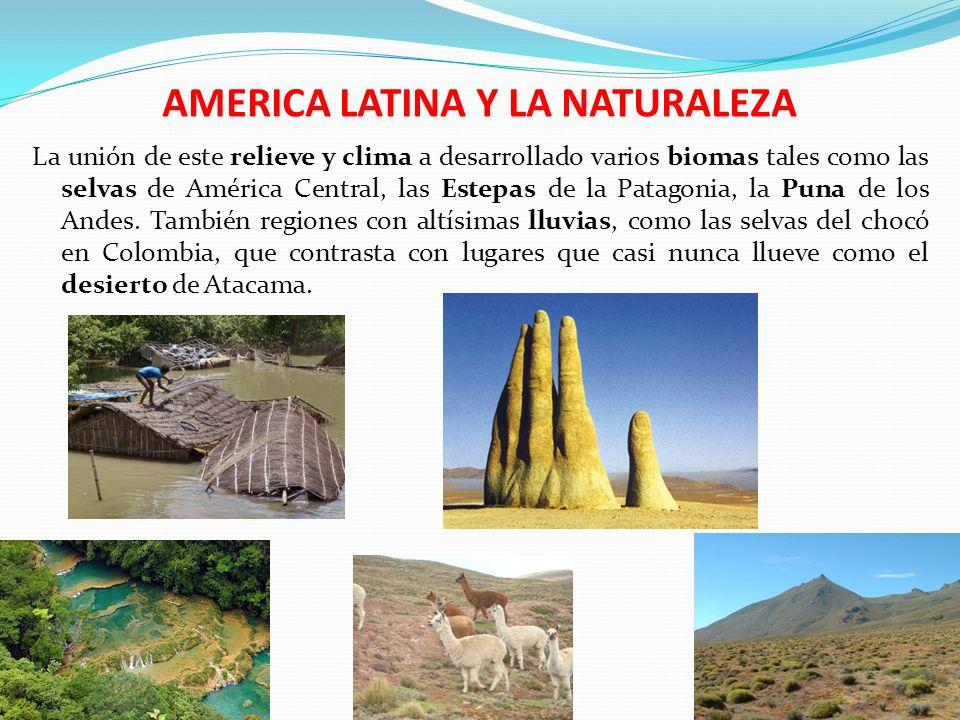AMERICA LATINA Y LA NATURALEZA La unión de este relieve y clima a desarrollado varios biomas tales como las selvas de América Central, las Estepas de