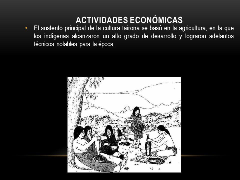 ACTIVIDADES ECONÓMICAS El sustento principal de la cultura tairona se basó en la agricultura, en la que los indígenas alcanzaron un alto grado de desa