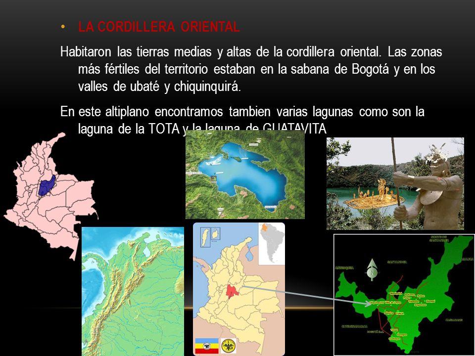 LA CORDILLERA ORIENTAL Habitaron las tierras medias y altas de la cordillera oriental.