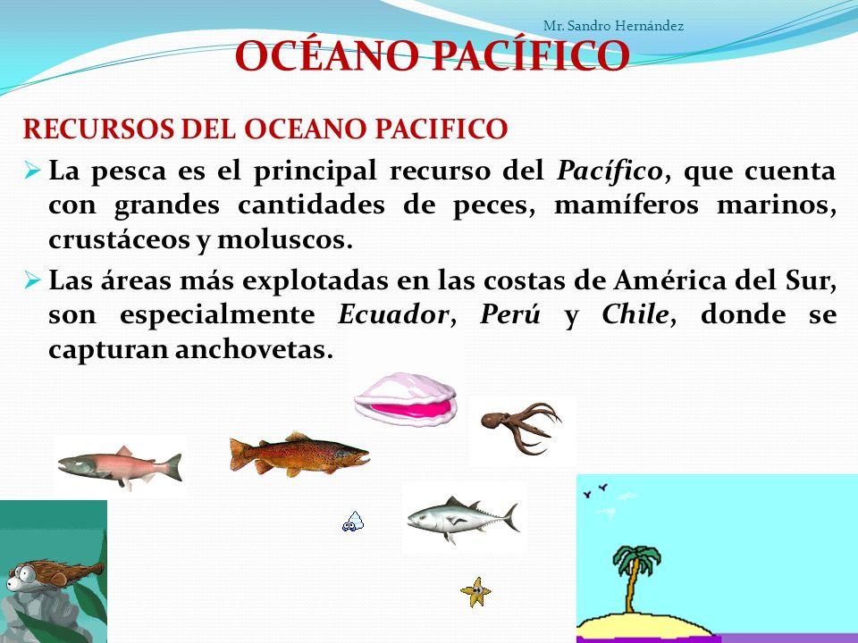 OCÉANO PACÍFICO RECURSOS DEL OCEANO PACIFICO La pesca es el principal recurso del Pacífico, que cuenta con grandes cantidades de peces, mamíferos marinos, crustáceos y moluscos.