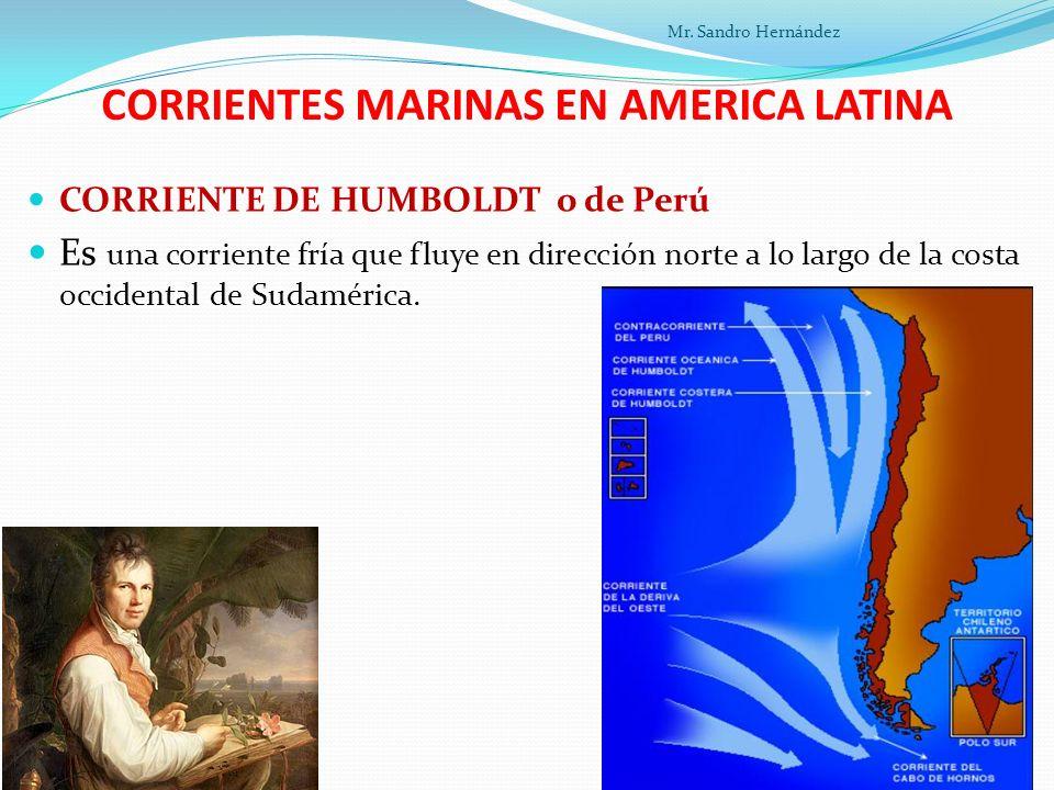 CORRIENTES MARINAS EN AMERICA LATINA CORRIENTE DE HUMBOLDT o de Perú Es una corriente fría que fluye en dirección norte a lo largo de la costa occidental de Sudamérica.
