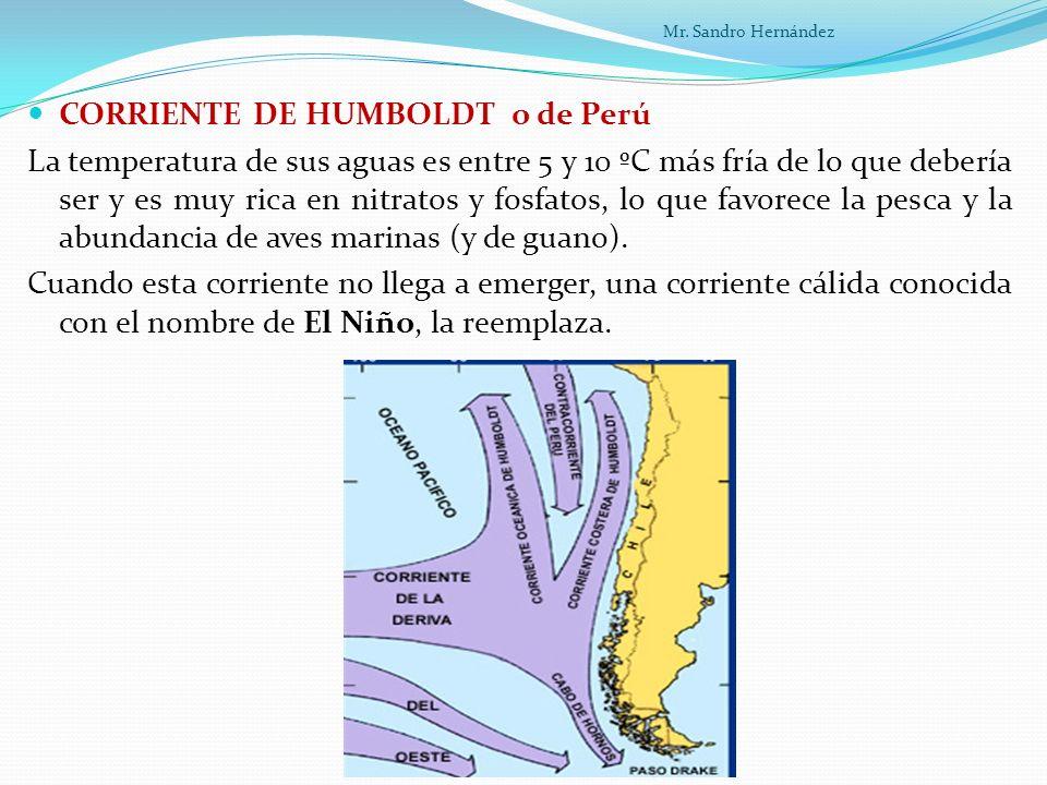 CORRIENTE DE HUMBOLDT o de Perú La temperatura de sus aguas es entre 5 y 10 ºC más fría de lo que debería ser y es muy rica en nitratos y fosfatos, lo que favorece la pesca y la abundancia de aves marinas (y de guano).