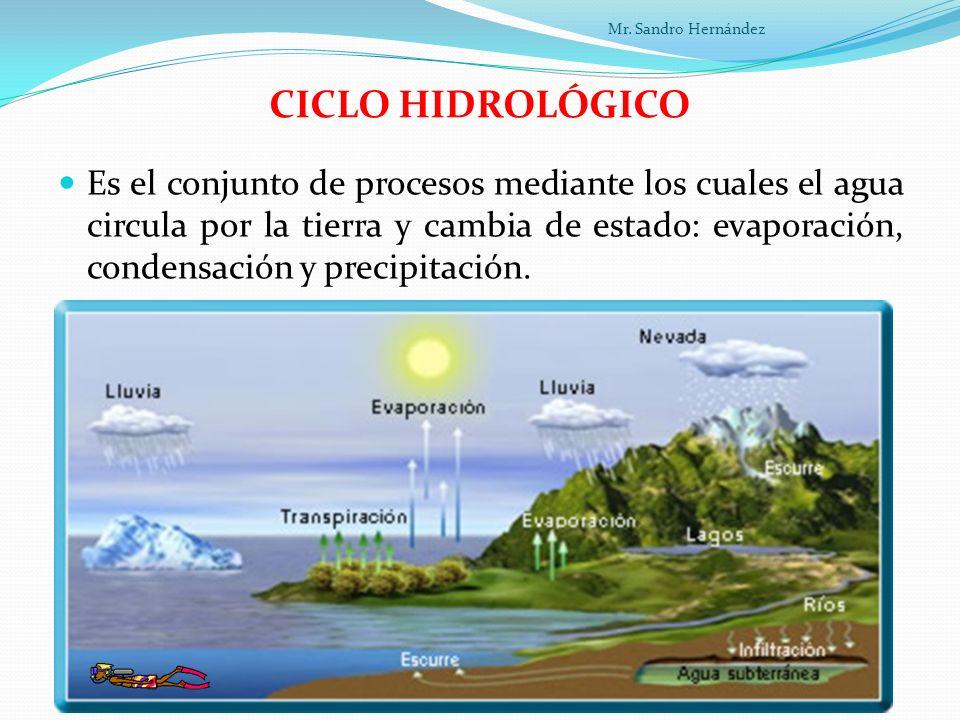 LAS AGUAS MARINAS Las aguas marinas son saladas porque tienen gran cantidad de sales minerales disueltas.