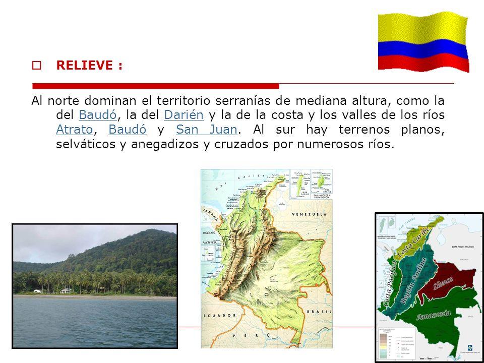 RELIEVE : Al norte dominan el territorio serranías de mediana altura, como la del Baudó, la del Darién y la de la costa y los valles de los ríos Atrat