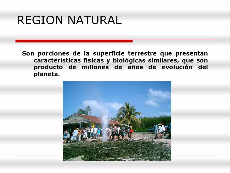 REGION NATURAL Son porciones de la superficie terrestre que presentan características físicas y biológicas similares, que son producto de millones de