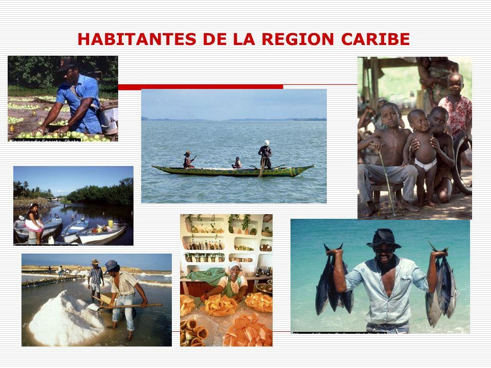 ACTIVIDADES ECONOMICAS En esta región existe una gran variedad de productos agrícolas y ganaderos.