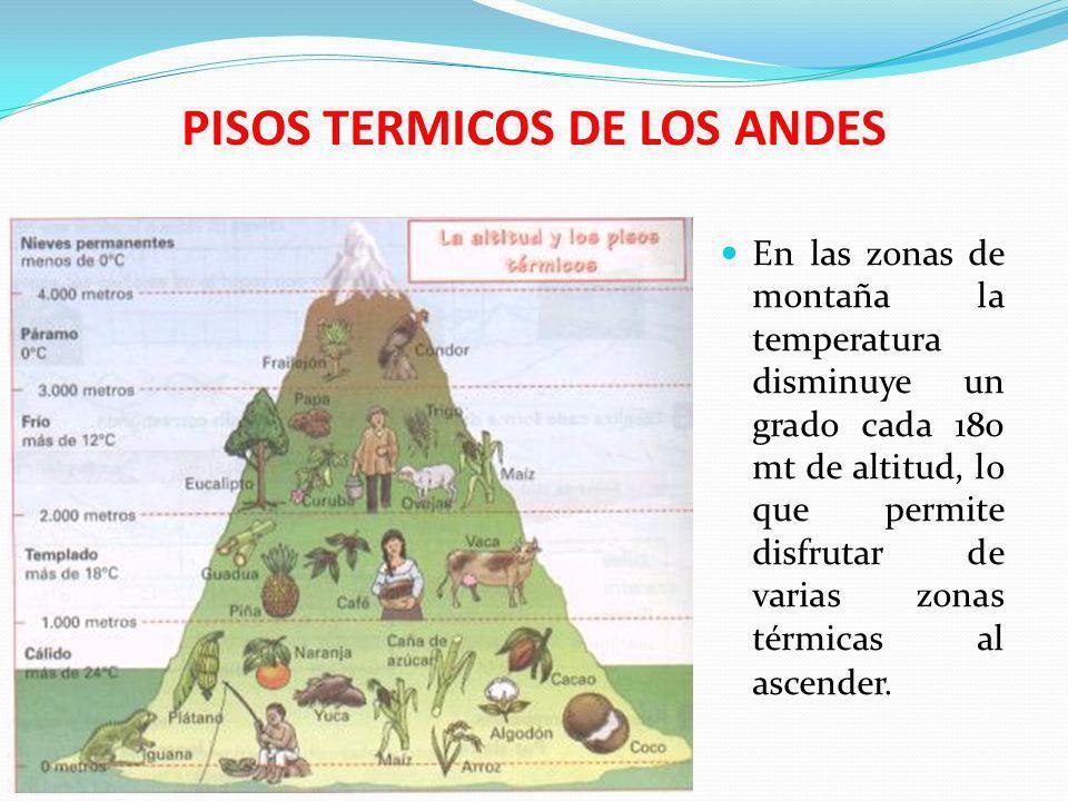 PISOS TERMICOS DE LOS ANDES En las zonas de montaña la temperatura disminuye un grado cada 180 mt de altitud, lo que permite disfrutar de varias zonas