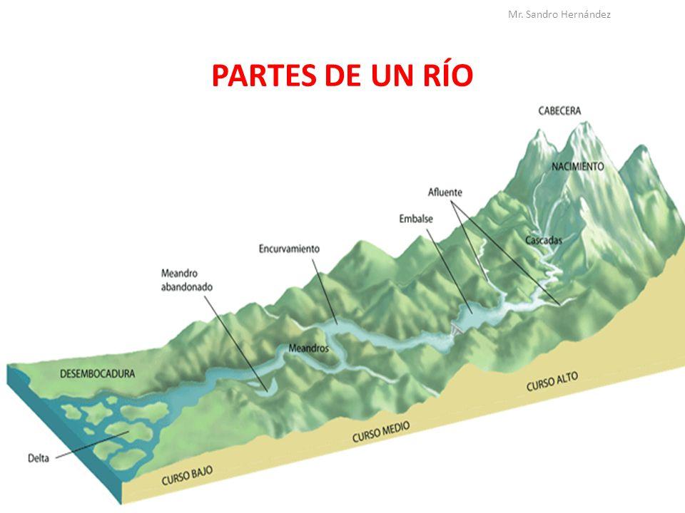 PARTES DE UN RÍO Mr. Sandro Hernández