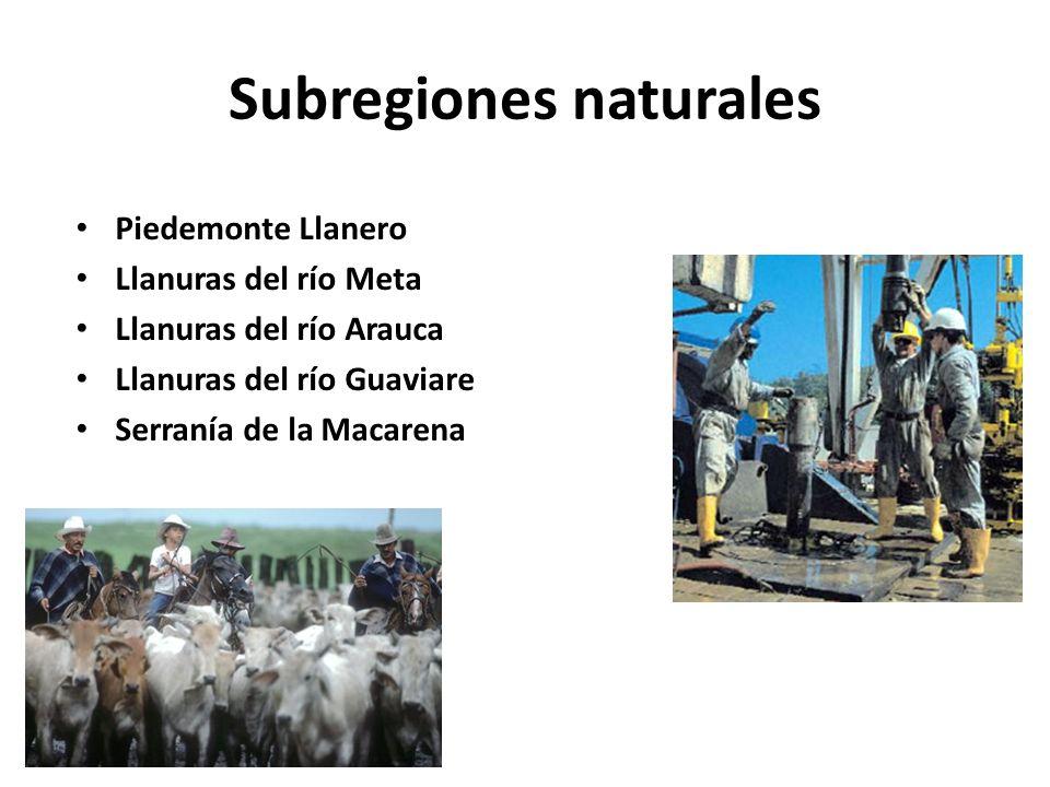 Subregiones naturales Piedemonte Llanero Llanuras del río Meta Llanuras del río Arauca Llanuras del río Guaviare Serranía de la Macarena