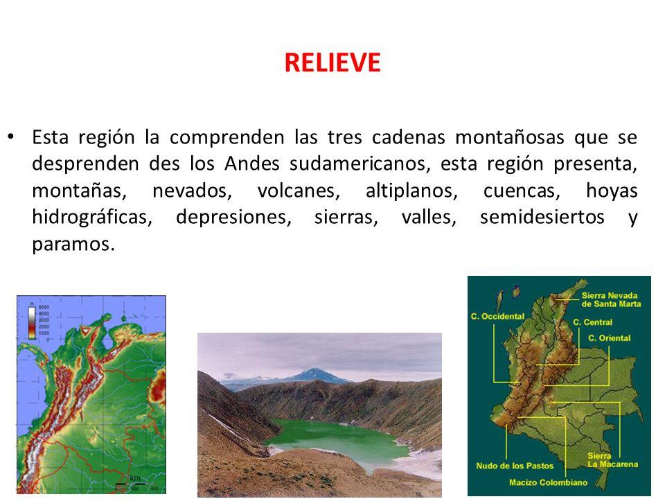 RELIEVE Esta región la comprenden las tres cadenas montañosas que se desprenden des los Andes sudamericanos, esta región presenta, montañas, nevados,