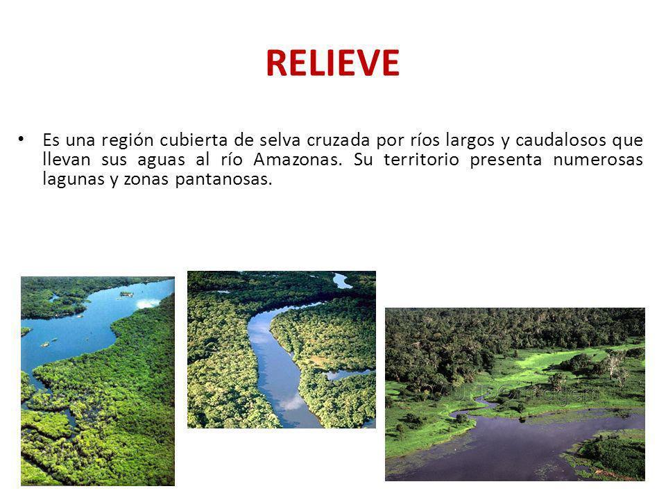 RELIEVE Es una región cubierta de selva cruzada por ríos largos y caudalosos que llevan sus aguas al río Amazonas. Su territorio presenta numerosas la