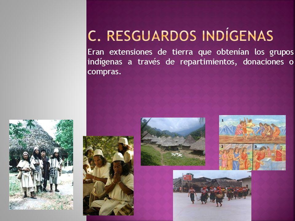 Eran extensiones de tierra que obtenían los grupos indígenas a través de repartimientos, donaciones o compras.