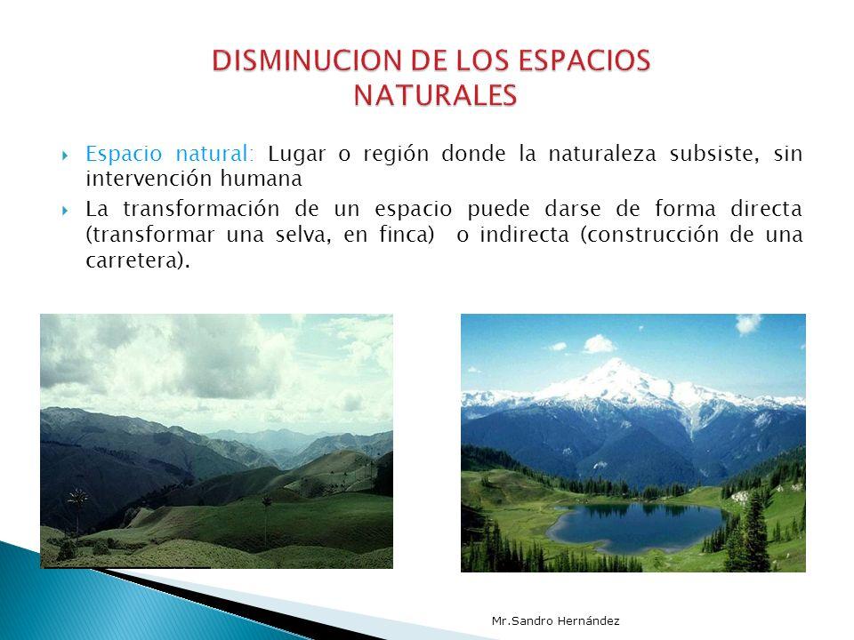 Espacio natural: Lugar o región donde la naturaleza subsiste, sin intervención humana La transformación de un espacio puede darse de forma directa (transformar una selva, en finca) o indirecta (construcción de una carretera).