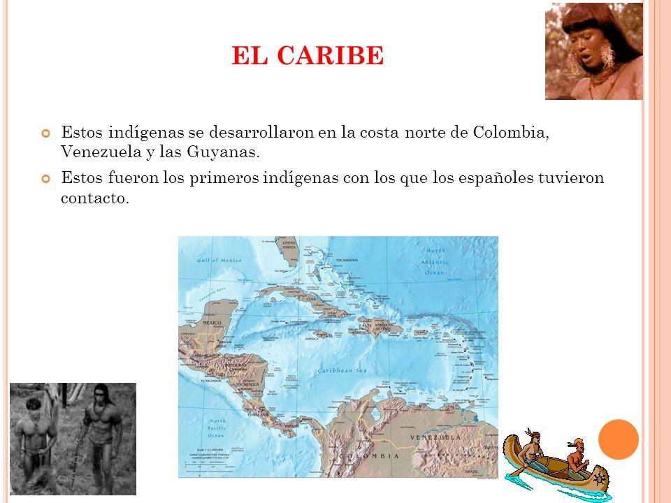 EL CARIBE Estos indígenas se desarrollaron en la costa norte de Colombia, Venezuela y las Guyanas. Estos fueron los primeros indígenas con los que los