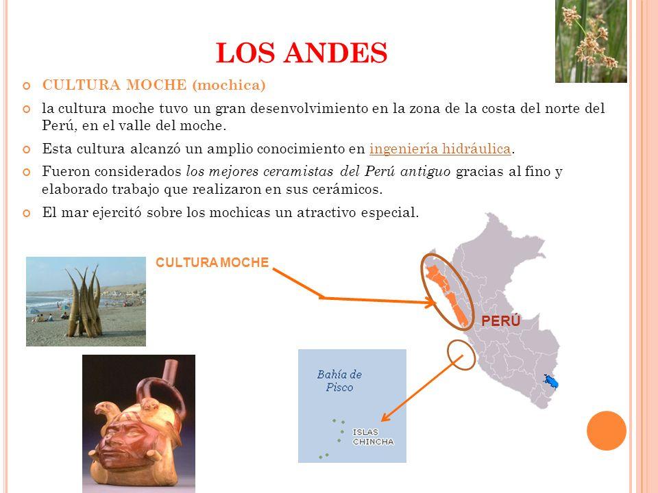 LOS ANDES CULTURA MOCHE (mochica) la cultura moche tuvo un gran desenvolvimiento en la zona de la costa del norte del Perú, en el valle del moche. Est