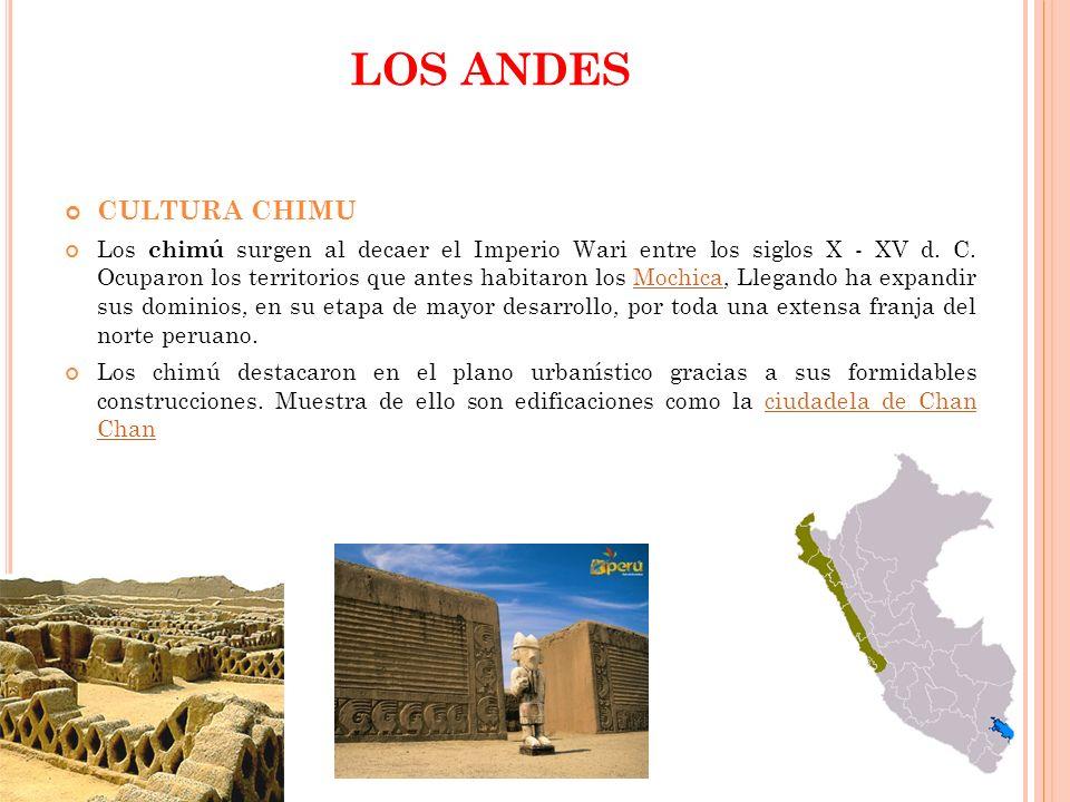 LOS ANDES CULTURA CHIMU Los chimú surgen al decaer el Imperio Wari entre los siglos X - XV d. C. Ocuparon los territorios que antes habitaron los Moch