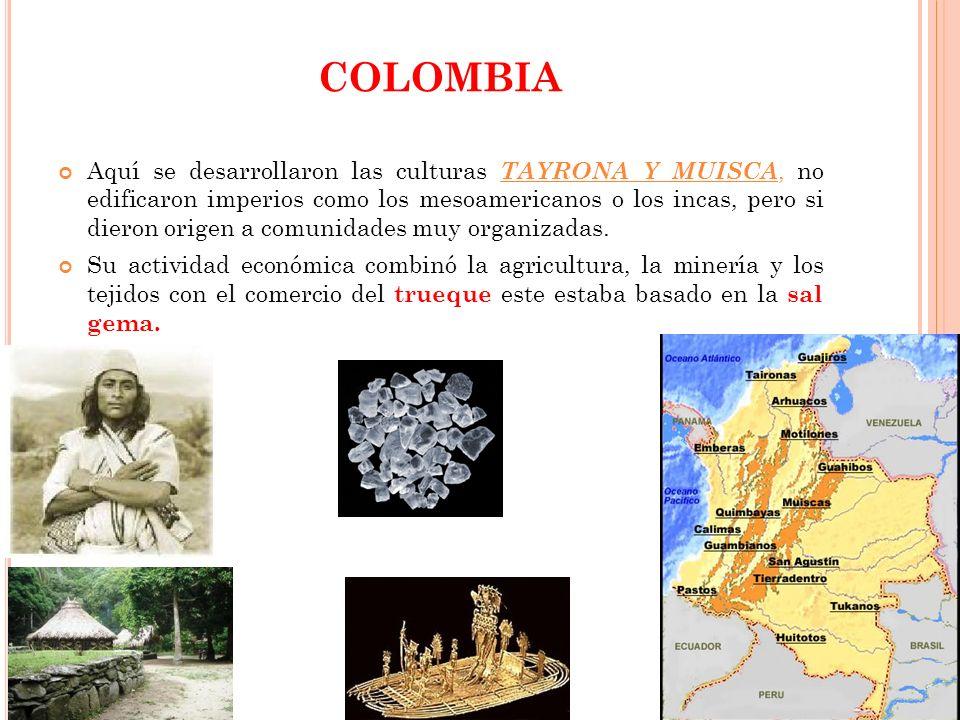 COLOMBIA Aquí se desarrollaron las culturas TAYRONA Y MUISCA, no edificaron imperios como los mesoamericanos o los incas, pero si dieron origen a comu