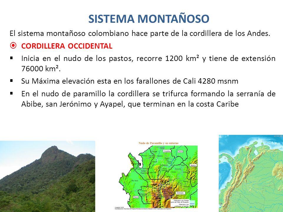 SISTEMA MONTAÑOSO CORDILLERA CENTRAL Inicia en el nudo de los pastos, recorre 1000 km² y tiene una extensión de 110000 km².