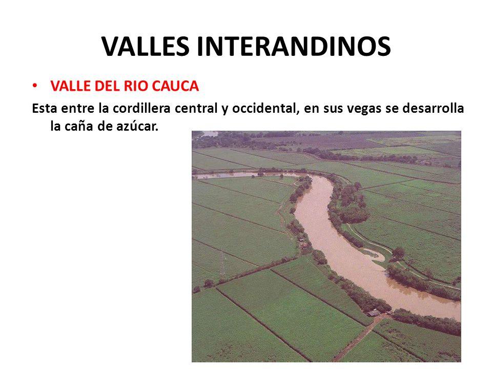 VALLES INTERANDINOS VALLE DEL RIO ATRATO Se encuentra entre la cordillera occidental y las serranías del Darién y Baudó, es una región muy húmeda y esta cubierta de selvas y mangles.
