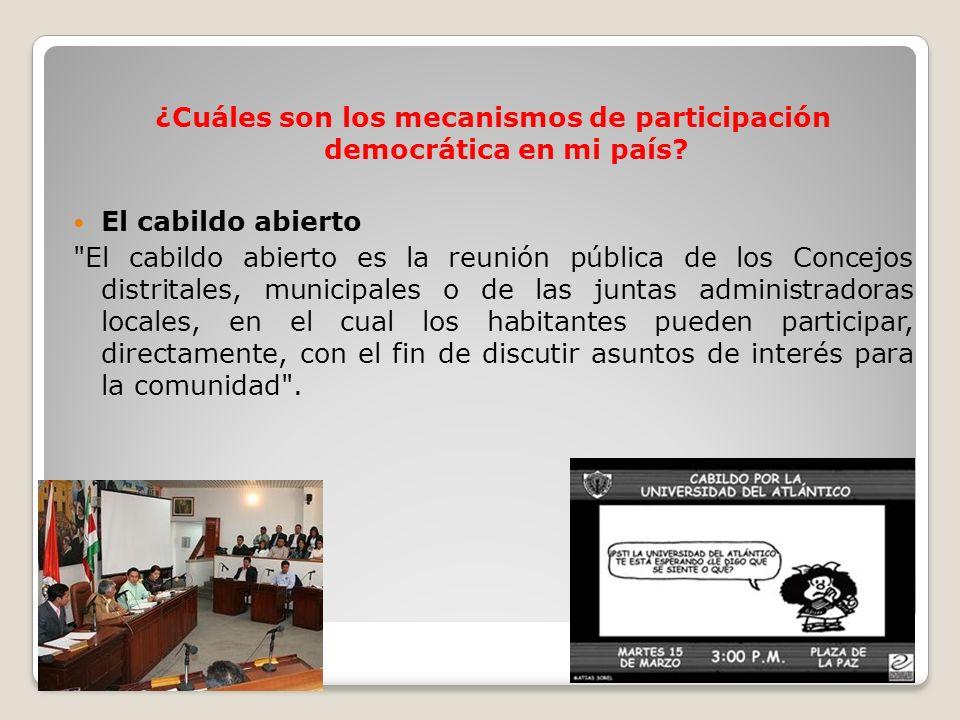 ¿Cuáles son los mecanismos de participación democrática en mi país? El cabildo abierto