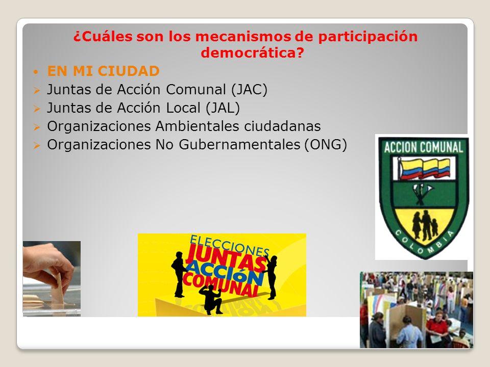 ¿Cuáles son los mecanismos de participación democrática? EN MI CIUDAD Juntas de Acción Comunal (JAC) Juntas de Acción Local (JAL) Organizaciones Ambie