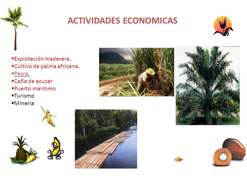 ACTIVIDADES ECONOMICAS Explotación maderera. Cultivo de palma africana. Pesca. Caña de azucar Puerto maritimo Turismo Minería