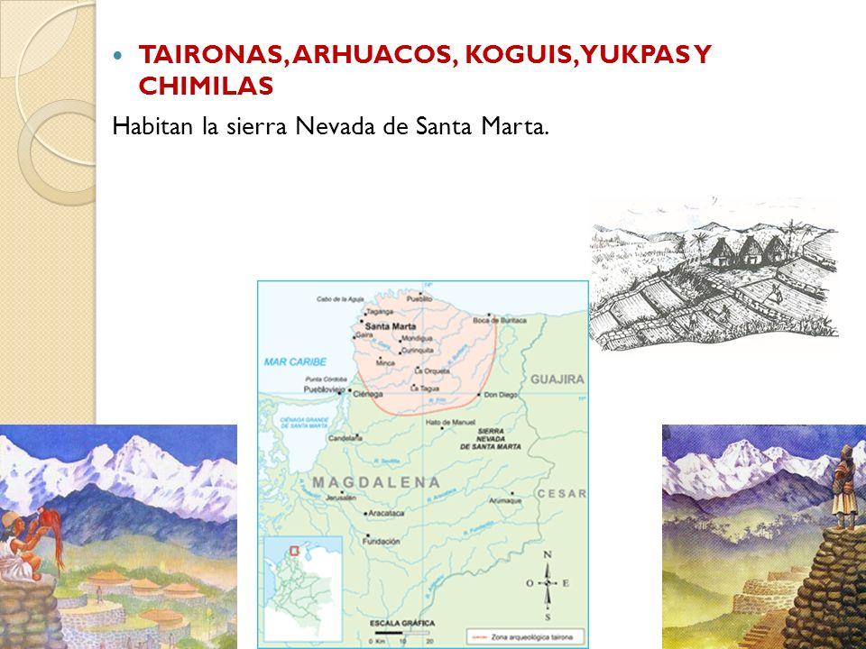 TAIRONAS, ARHUACOS, KOGUIS, YUKPAS Y CHIMILAS Habitan la sierra Nevada de Santa Marta.