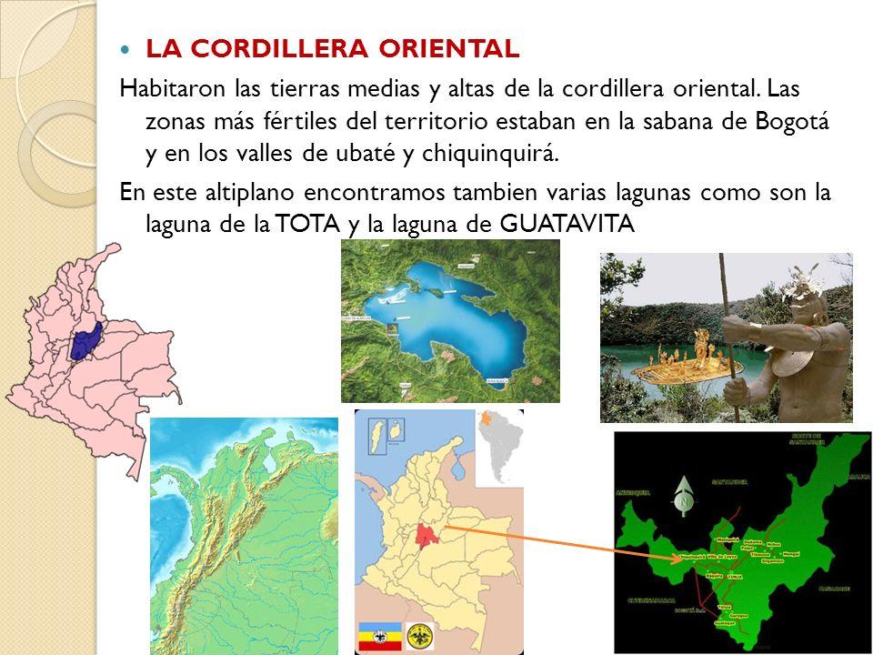 LA CORDILLERA ORIENTAL Habitaron las tierras medias y altas de la cordillera oriental. Las zonas más fértiles del territorio estaban en la sabana de B