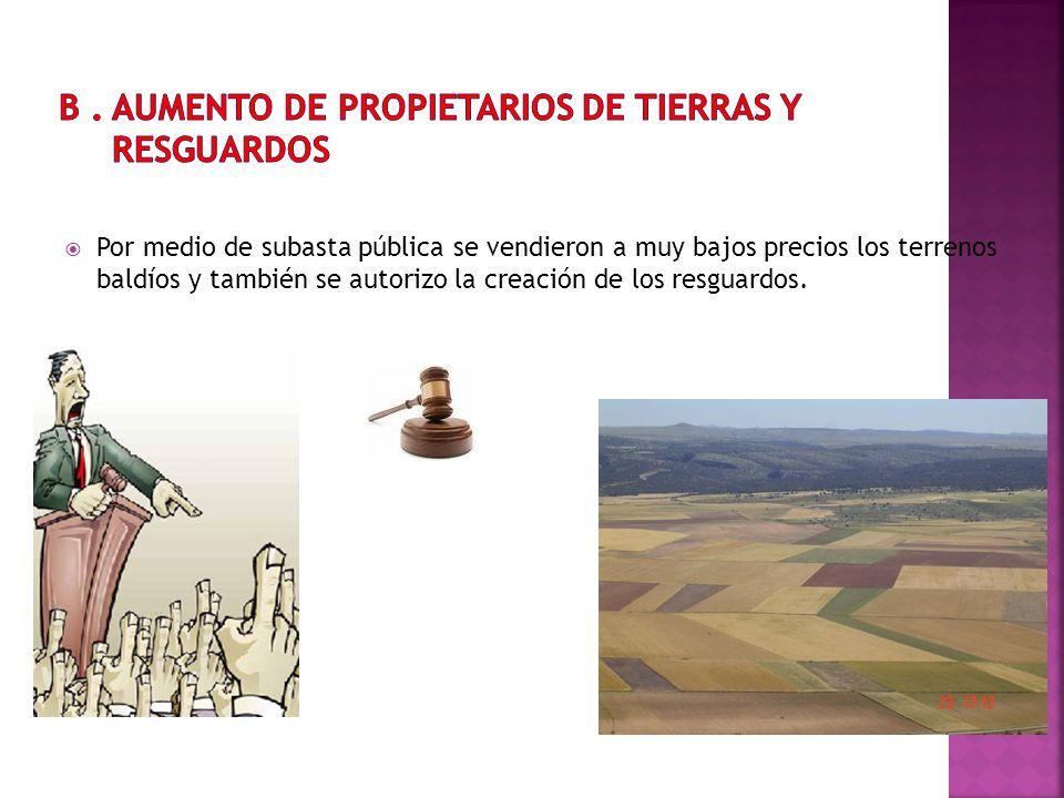 Por medio de subasta pública se vendieron a muy bajos precios los terrenos baldíos y también se autorizo la creación de los resguardos.
