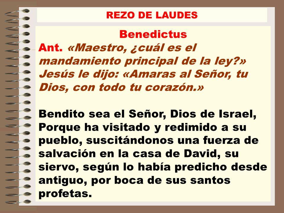 Benedictus Ant. «Maestro, ¿cuál es el mandamiento principal de la ley?» Jesús le dijo: «Amaras al Señor, tu Dios, con todo tu corazón.» Bendito sea el